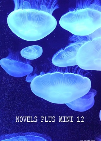【フロマ限定特典付き】NOVELS PLUS MINI 12